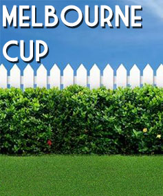 North-Sydney-MELBOURNE-CUP-2015